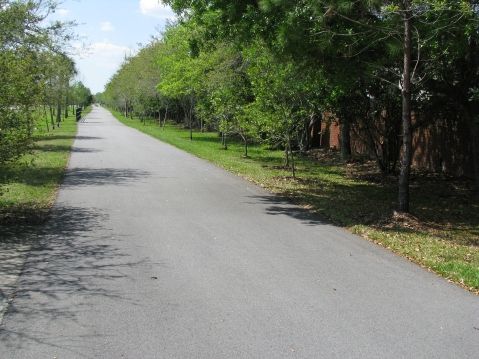 Trail section along SR 434