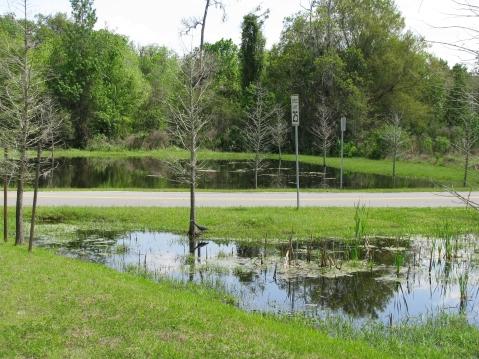 Stormwater ponds