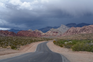 Just outside the scenic drive at Red Rock Conservation Area in Nevada